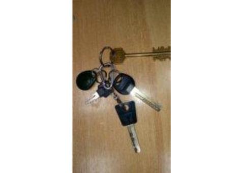 Связка ключей возле магазин-Ломбард по ул. Савушкина